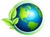 Green Handyman Services